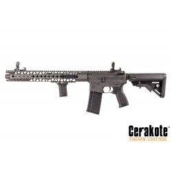 Evolution-Dytac LA M4 Carbine Lone Star Edition